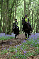 Bluebell ride 2014